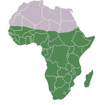 Figure 1: A map showing the boundaries of sub-Saharan Africa, south of the Sahara Desert
