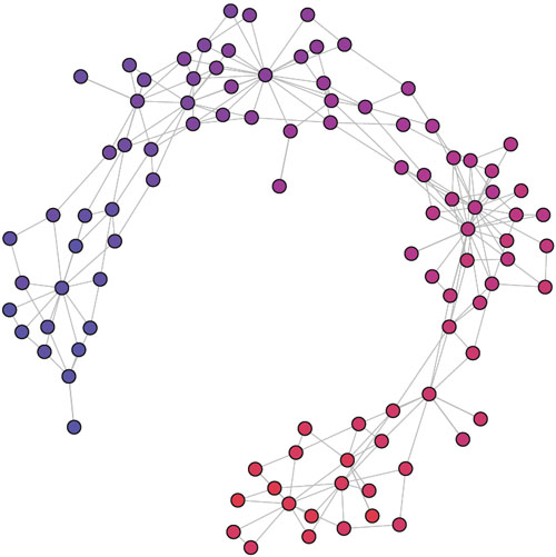 Figure 6: visualization of a network of trust links between citizens