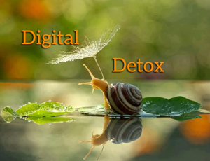 Example of resistance related to detox from technology by reconnecting to nature