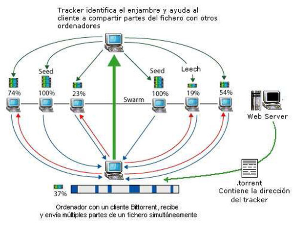 Illustration of the BitTorrent network in the Spanish language Wikipedia
