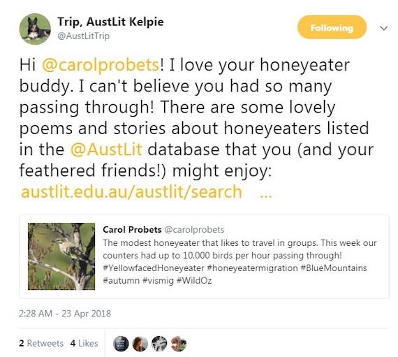 Tweet about honeyeaters from @AustLitTrip, 23 April 2018